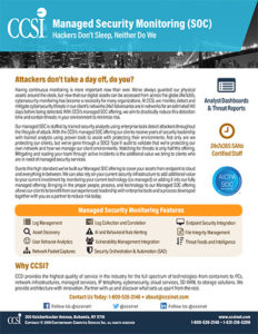 Download the Managed Security Monitoring Brochure